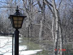 Lanterne printanière / Spring lantern - Sans flash / With no flash.