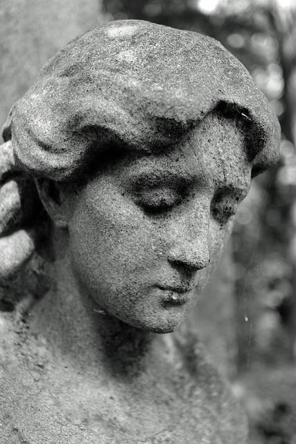 Weeping Angel 4