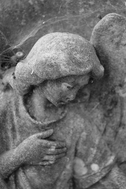Weeping Angel 5