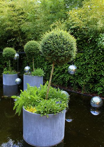 En appesanteur- Jardin 9- Pots avec Troènes