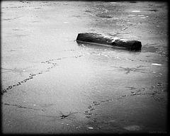 Captain's frozen log
