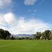 Sunnylands - Annenberg Estate (3527)