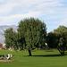 Sunnylands - Annenberg Estate (3548)
