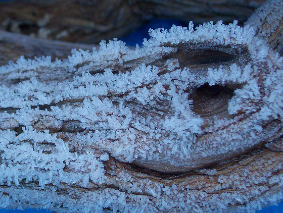 Frost patterns on a piece of wood