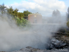 A hot pool, Rotorua