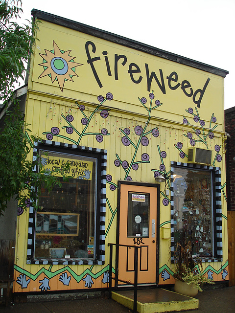Fireweed funny house.