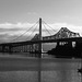 Bay Bridge (Mono) - 17 November 2013