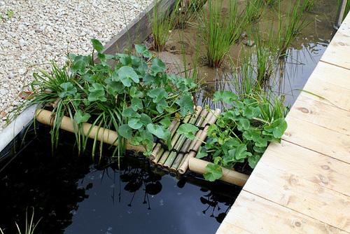 Jardin des rizières - Jardin 24 (8)