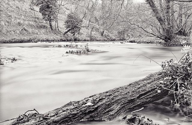Derbyshire Wye - Millers Dale