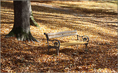 Der Herbst läd nochmals ein...