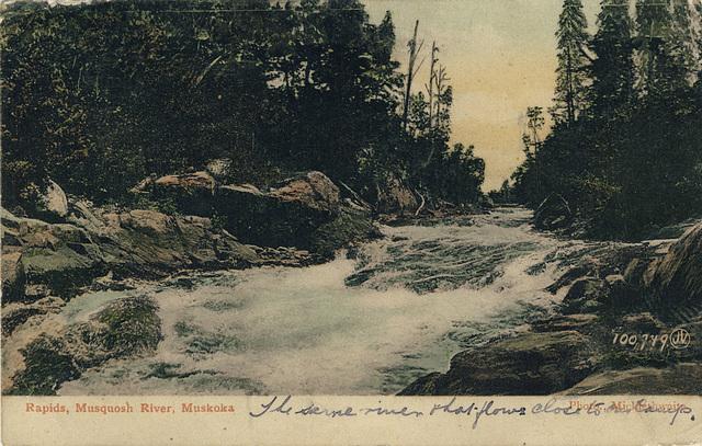 Rapids, Musquosh River, Muskoka (100,979)
