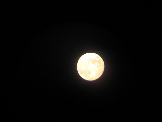 月到中秋分外明