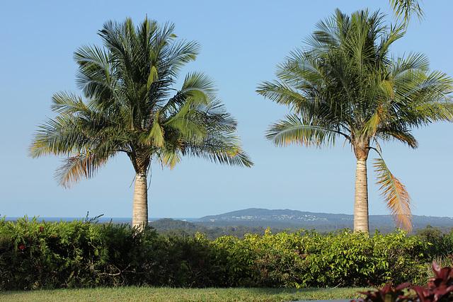 View to Laguna Bay and Noosa