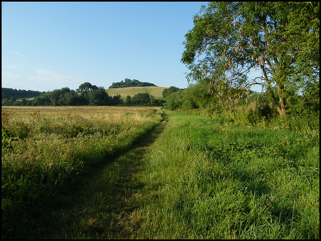 path to the clumps