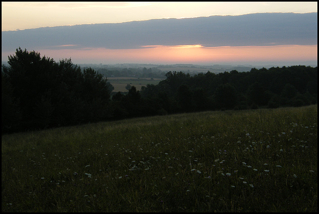 hillside at dawn