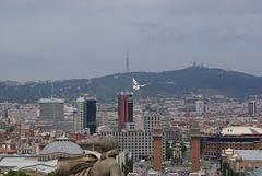 487 - Barcelona