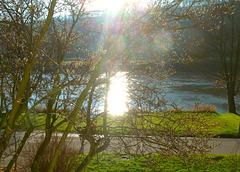 11.12.2013 - Sonne über dem Elbtal - la suno sur la Elbvalo