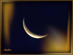 Douce nuit !et bon WE à tous !