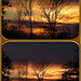 Sunset 15-11-13 Collage