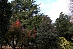 Jardin Vinay en automne (5)