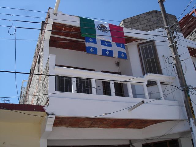 Fleurdelysée allongé et drapeau mexicain en harmonie / Mexican an doctored Quebec flag in electric harmony.