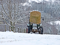 Ravitaillement (2 )bien pratique dans la neige...
