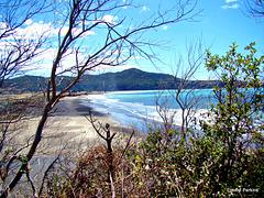 Glimpse of Hicks Bay