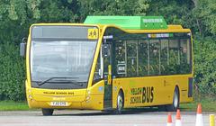 The Green/Yellow School Bus