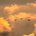 Le bon or est dans le ciel......................