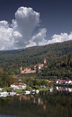 Zwingenberg am Neckar (330°)