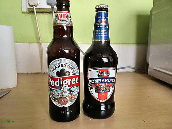 beer 13
