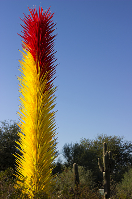 Dale Chihuly returns to the Botanical Gardens