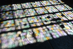 Alkmaar 2014 – Grote of Sint-Laurenskerk – Light
