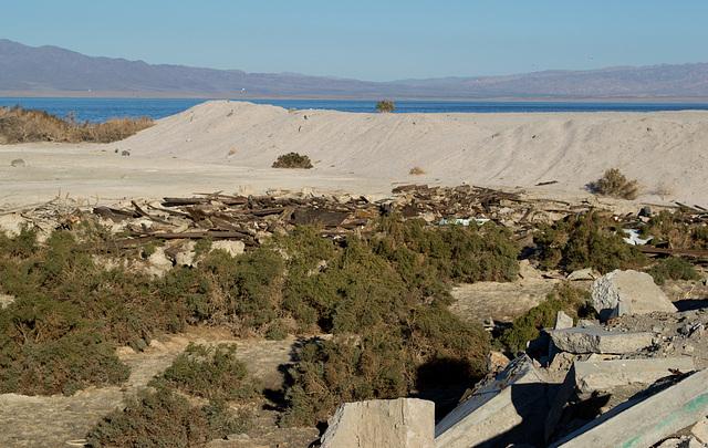 Salton Sea Beach (0738)