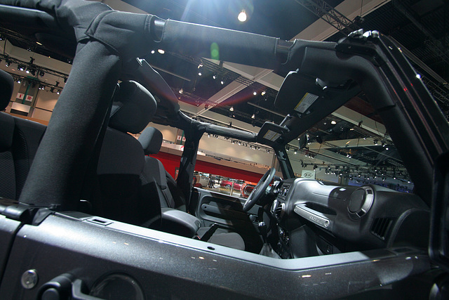 Jeep Wrangler Willys (3766)