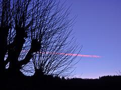 l'aube tire un trait sur la nuit / The morning pulls a line on the night
