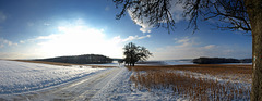Wintermorgen (165°)