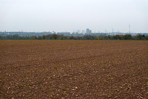 frankfurt-blick-1170660-co