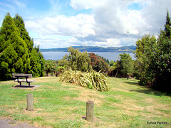 A view of Lake Taupo