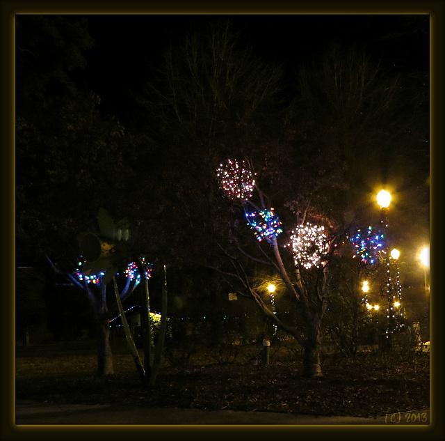 Truffula trees !