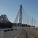 SF Bay Bridge (1081)