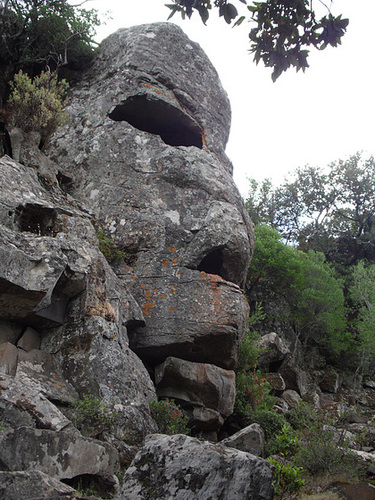 Face in a Rock