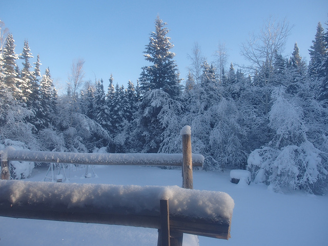 North pole 2014-2-9 afternoon 002