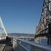 SF Bay Bridge (1089)