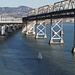 SF Bay Bridge (1097)
