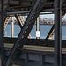 SF Bay Bridge (1099)