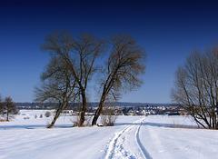 #8  The last snow of the winter - Der letzte Schnee des Winters (000°)