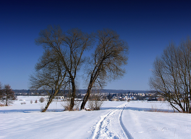 #8  The last snow of the winter - Der letzte Schnee des Winters (000°)