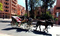 A Marrakech..!