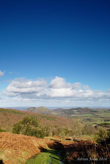 Shropshire View.